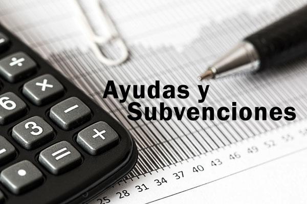 imagen_ayudas_subvenciones