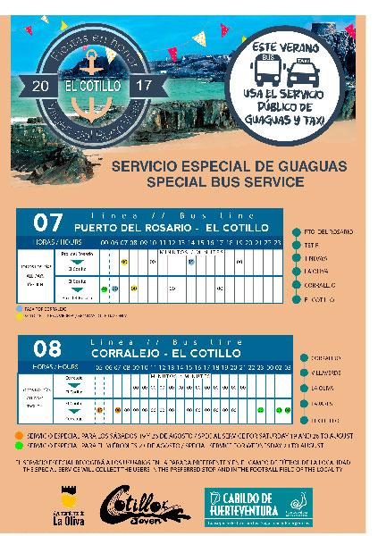 servicios_guaguas_cotillo2017