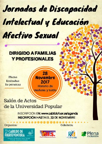 cartel_jornadas_discapacidad_intelectural