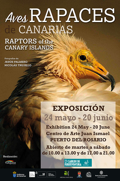 cartel_aves_rapaces