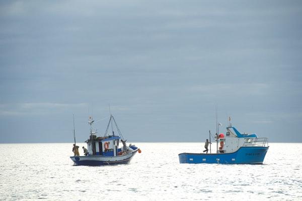 barcos_pesca