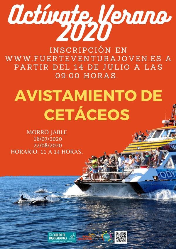 cartel_avistamiento_cetaceos