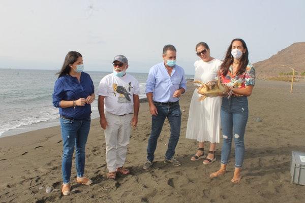 El Cabildo de Fuerteventura libera un ejemplar recuperado de tortuga boba en Las Playitas